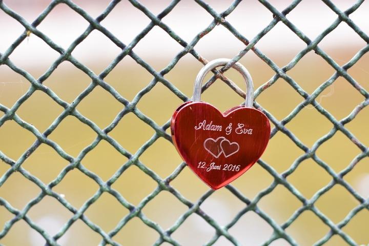 heart-1896953_960_720.jpg