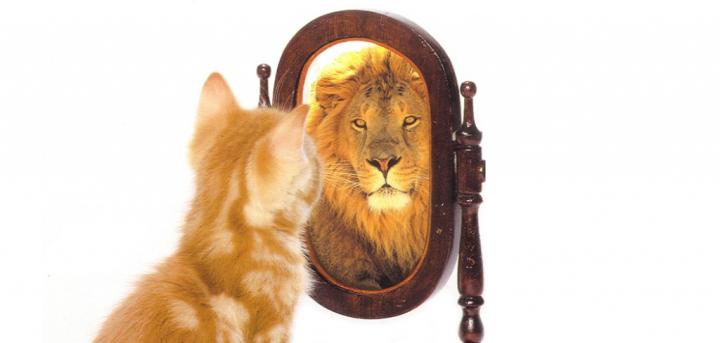 confidence-farzana-featured-1024x489.png