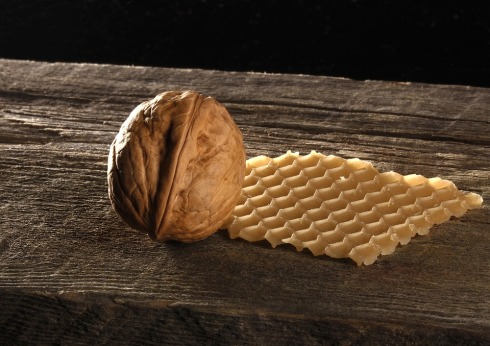 walnut-480120_960_720.jpg