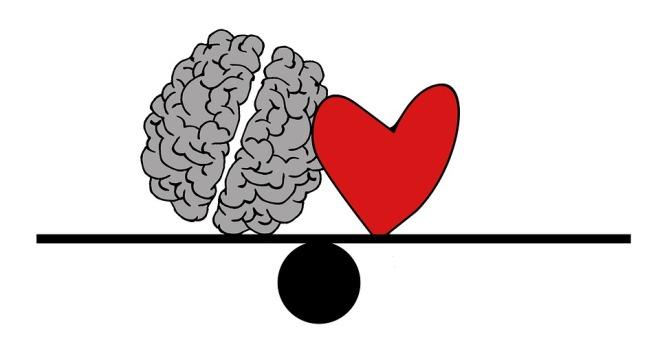 brain-2146157_960_720.jpg