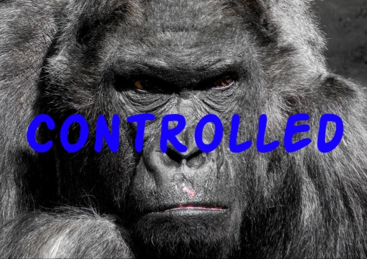 controll.jpg