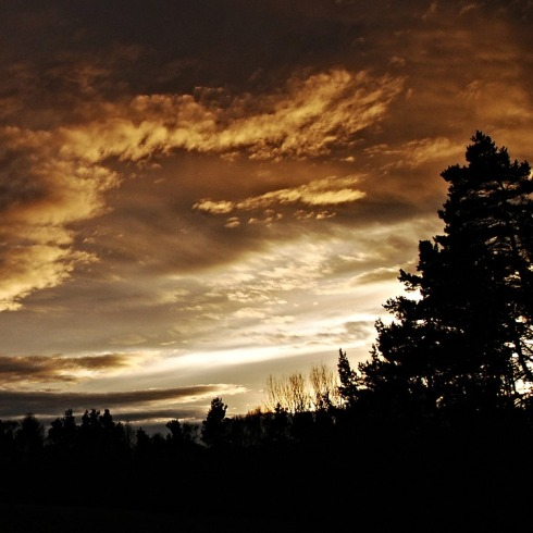 sunset-202380_960_720.jpg